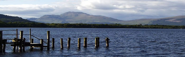 supply chain solution loch lomond image one